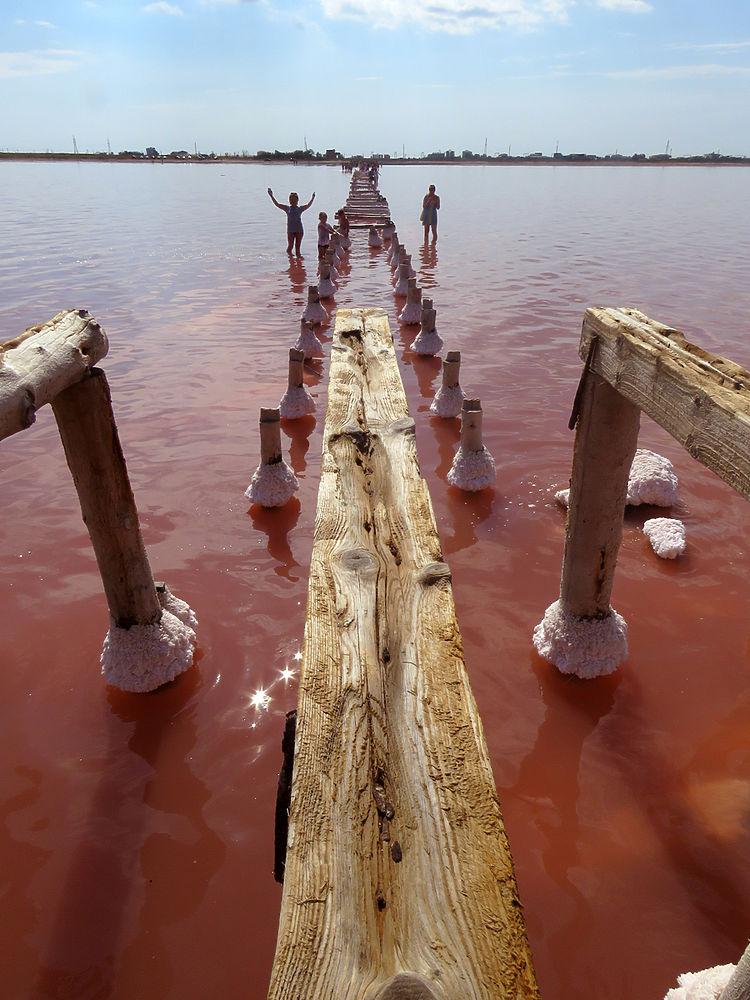 Крым великолепный: фантастические виды розового озера Сасык