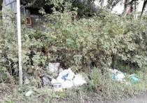 Отличное мнение: депутаты решили, что Петрозаводск не справляется с мусором