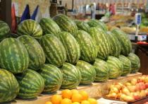 Почему покупать продукты на обочине вредно для здоровья