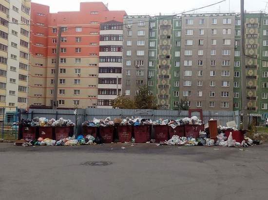 Потерпим до понедельника: в администрации Челябинска обсудили мусорный коллапс