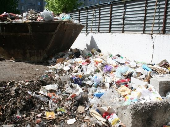 Челябинцы жалуются на переполненные мусором контейнерные площадки