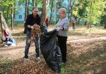 В субботник вывозили мусор, собирали листву, красили бордюры