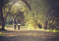 Группа шведских исследователей, представляющих Готенбургский университет, обнаружили взаимосвязь между ежедневными прогулками и пониженной вероятностью преждевременной смерти от инсульта