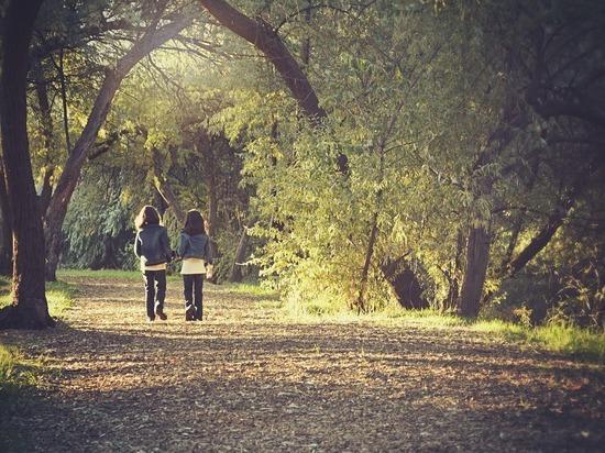 Доказано, что получасовые прогулки спасают жизнь