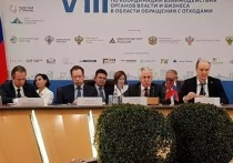К 2021 году в Ярославском регионе заработают пять новых мусоросортировочных комплексов