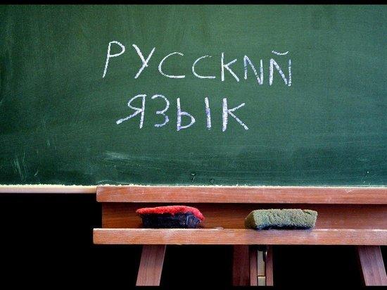 В Донбассе могут запретить русский язык
