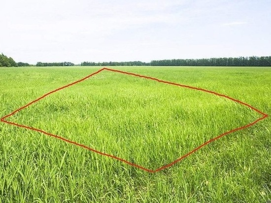 Как развиваются проекты по освоению дальневосточного гектара