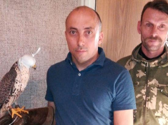 Приманили мясом: москвичи помогли найти сбежавшего из питомника сокола
