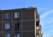 В Оренбурге из горящей квартиры на Карагандинской спасены 3 человека
