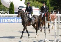 ФОТО: В Тульской области проходят соревнования по конкуру