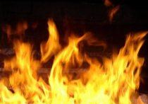 Мужчина сгорел заживо на пожаре в Тверской области