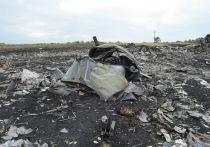 Эксперт о «нестыковках» по крушению МН17: критиковали «не по тому ГОСТу»