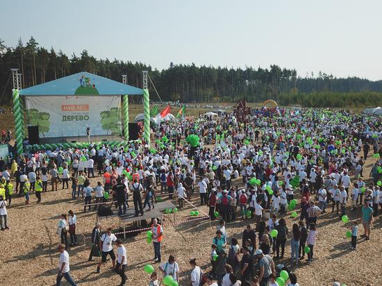 За выходные в Подмосковье «выросло» более миллиона деревьев