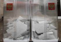 Сипягин победил единоросса Орлову на выборах губернатора Владимирской области