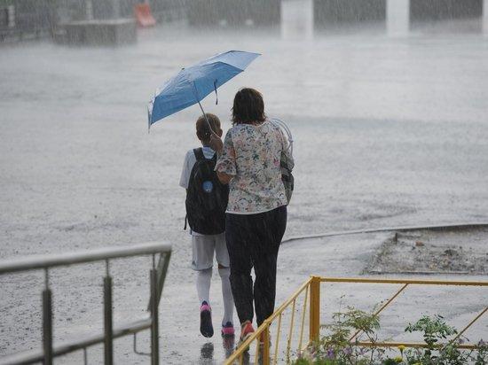 Дождливая и ветреная погода при +17°С пришла в Волгоград