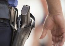 В Устьянах полицейскому пришлось открыть огонь по автоугонщику