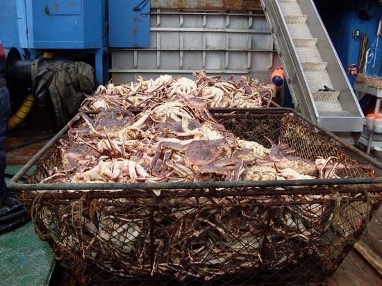 Рыбаки готовы свернуть свои инвестиционные планы