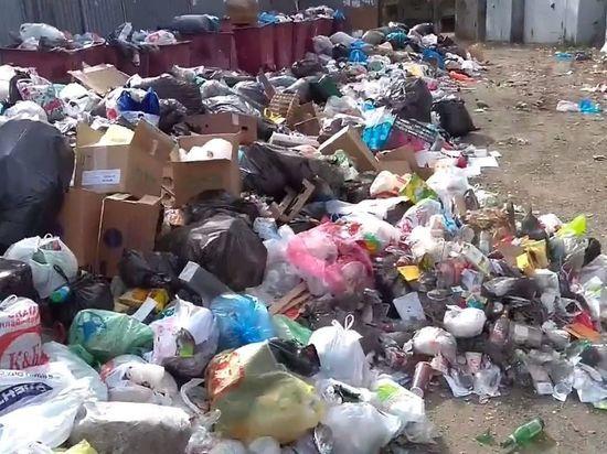 В Челябинск вывозить страшные мусорные свалки направили мусоровозы из городов