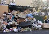 Плата за вывоз мусора со следующего года резко возрастет
