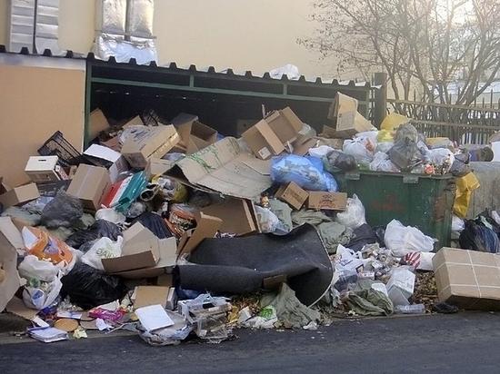 В новой графе за вывоз мусора с будущего года появятся пугающие цифры