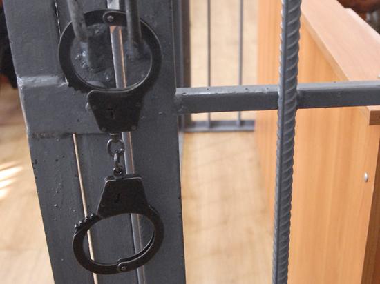 В Москве задержан сотрудник цирка, совращавший дочерей своих любовниц