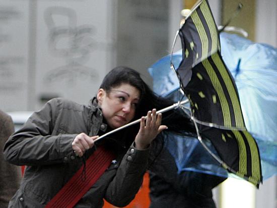 Москвичей предупредили о дождливой и ветреной погоде в пятницу