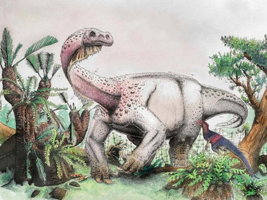 Динозавр неизвестного вида найден в ЮАР: учёных удивила его «походка»
