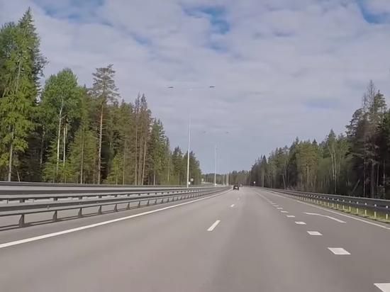 Названа стоимость строительства скоростной магистрали Москва - Казань