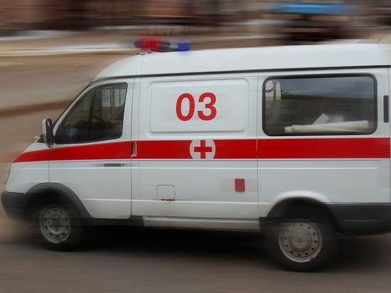 В подмосковном Пушкино с дерева сняли труп 13-летнего школьника
