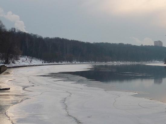 Москвичку, которую выловили из реки с двумя детьми, признали невменяемой