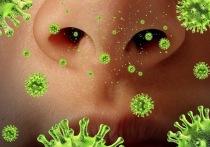 Вирусы атакуют Мордовию