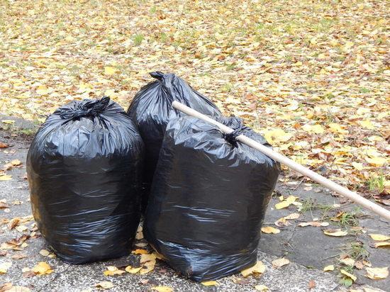 Чистый город: месяц субботников продолжается в Вологде