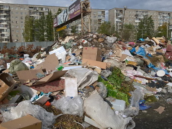 Екатеринбург утопает в мусоре