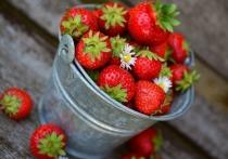 Вещество, содержащееся во многих овощах и фруктах, замедляет старение и продлевает жизнь, заявили представители ряда американских университетов