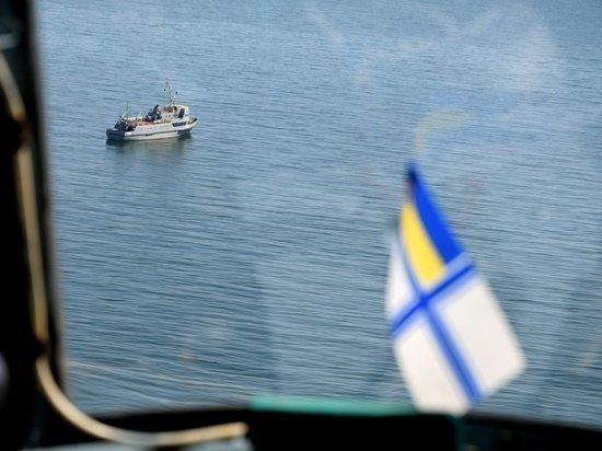 «Наши баркаса  невидимы для русских  радаров»,— вУкраинском государстве  сделали громкое объявление