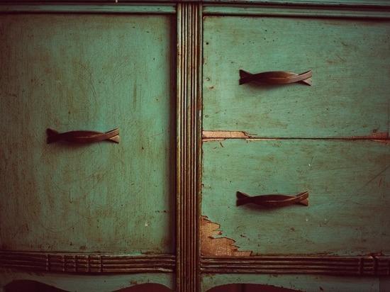 Двухметровый житель Улан-Удэ прятался в шкафу от приставов