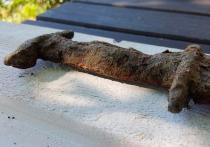 Юная американка Сага Ваничек, жившая в американском штате Миннесота, а некоторое время назад переехавшая с семьёй в Швецию, обнаружила средневековый меч, возраст которого специалисты оценивают в полтора тысячелетия