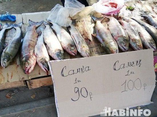 Доступная рыба «заплыла» в торговые сети и к браконьерам