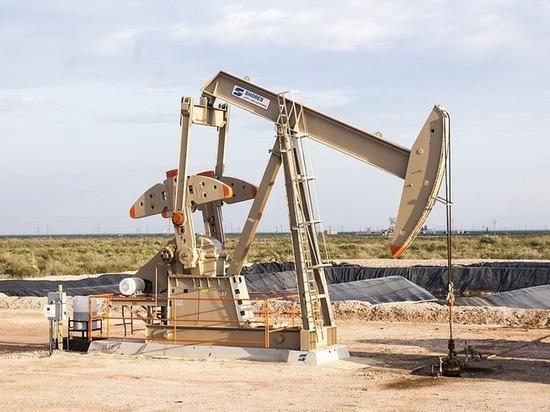 «Роснефть» может подтвердить прогнозные запасы нефти в Бурятии