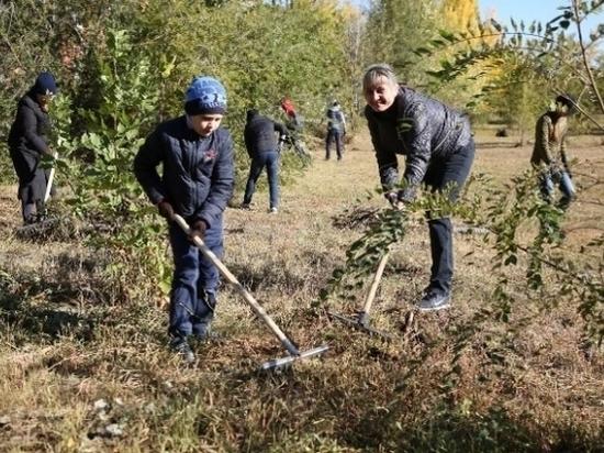Общегородской субботник прошел в Волгограде