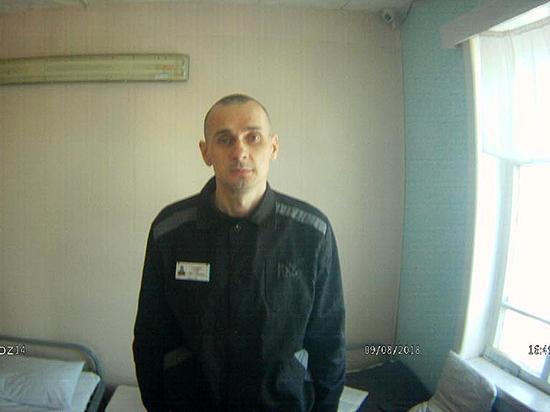 ЕС призывает Россию освободить прекратившего голодовку Олега Сенцова - Общество