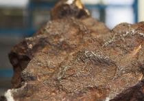 Фермер из американского штата Мичиган Дэвид Мазурек десятилетиями использовал крупный метеорит редкого типа в качестве подпорки для двери своего амбара