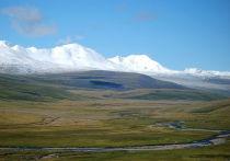 Экологи вновь выступили против газовой трубы в Китай через Алтай