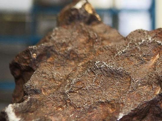 Метеорит стоимостью 100 тысяч долларов 30 лет подпирал дверь амбара