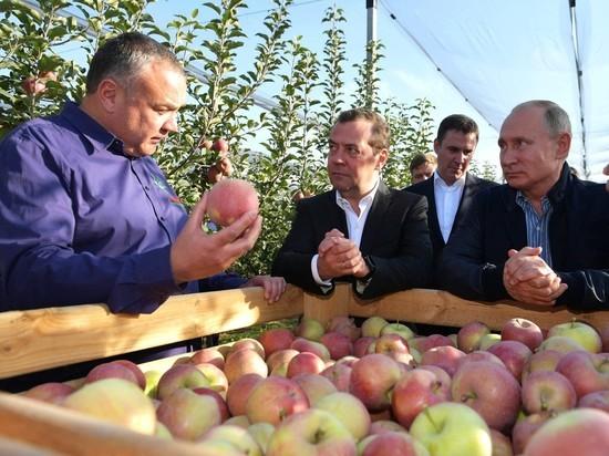 Путин и Медведев вместе появились на публике в необычной обстановке