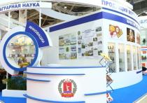 Волгоградская делегация показала объединенный потенциал на выставке «Золотая осень – 2018»