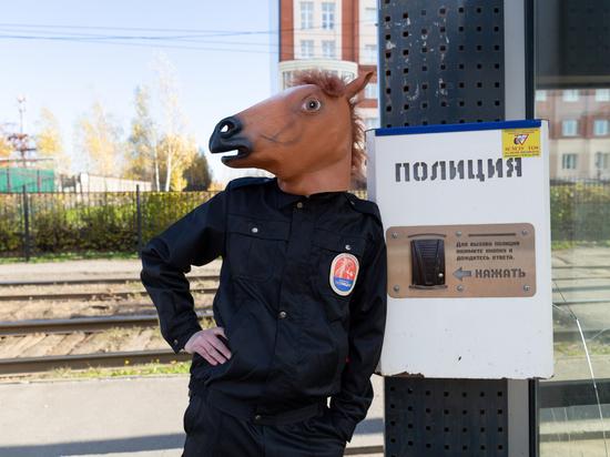 Конь-полицейский навел порядок в Томске!
