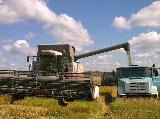 Доля Калужского филиала Россельхозбанка на региональном рынке кредитования сезонных работ превышает 90%