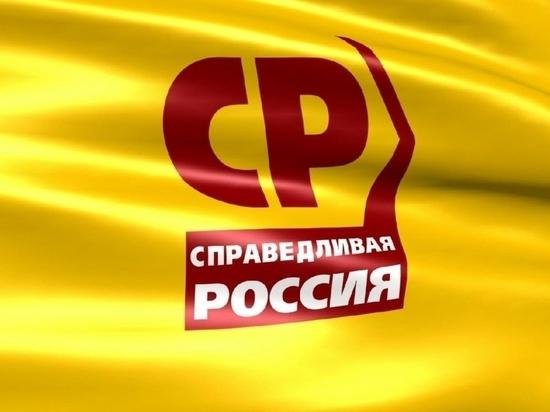 Финансовые трудности «Справедливой России» в Тульской области носят технический характер