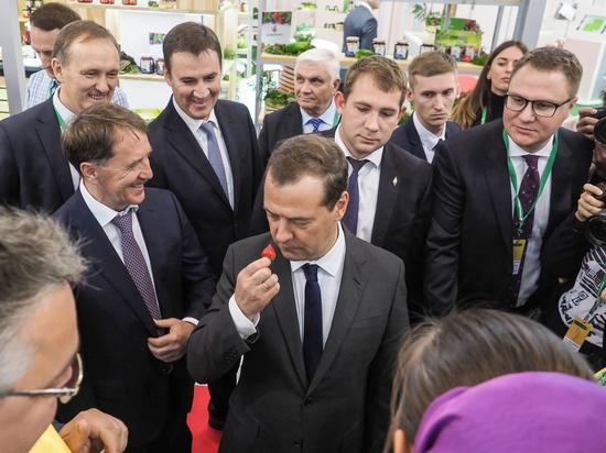 Дмитрию Медведеву пришлась по вкусу ставропольская клубника